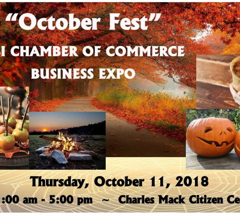 MSI Chamber Business Expo
